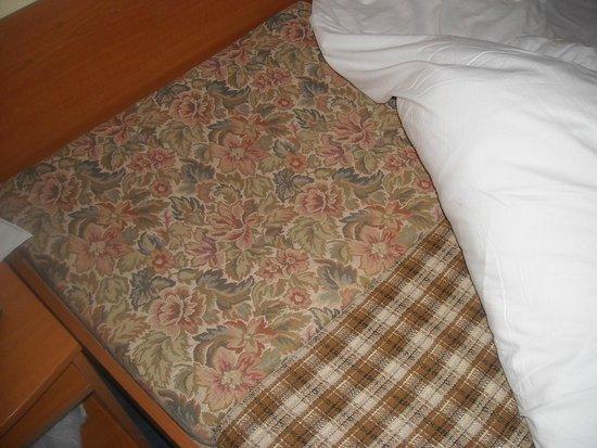 Albion Hotel: materasso