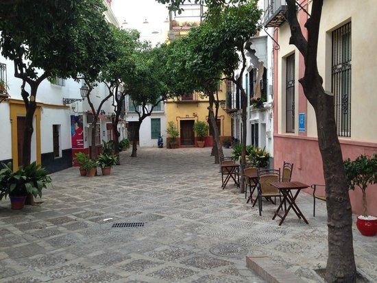 Hotel Palacio Alcazar: Street where Hotel is located