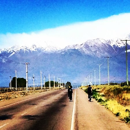 Mendoza Wine Bike Tour