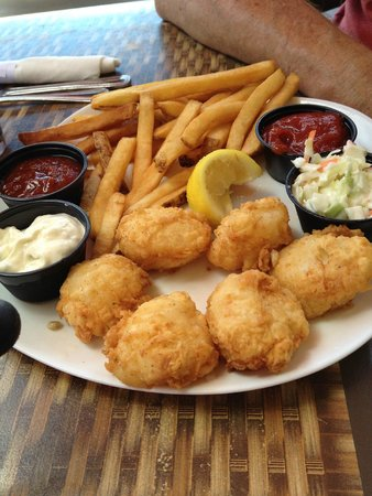 The Pink Elephant : Fish and chips