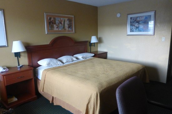Photo of Motel 6 Memphis - Graceland