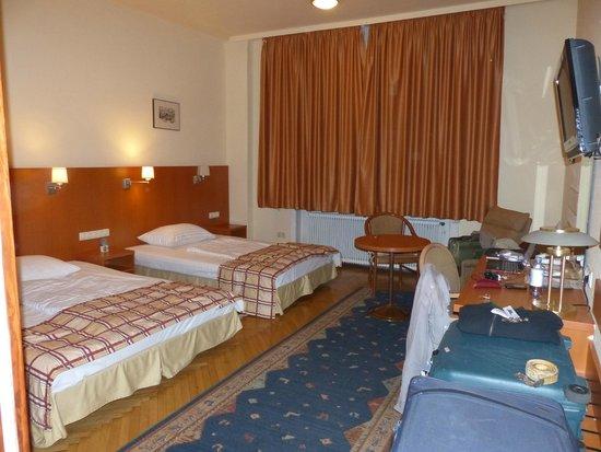 Hotel-Pension Continental: Habitación N° 42, amplia, con kitchinette, plasma y WiFi
