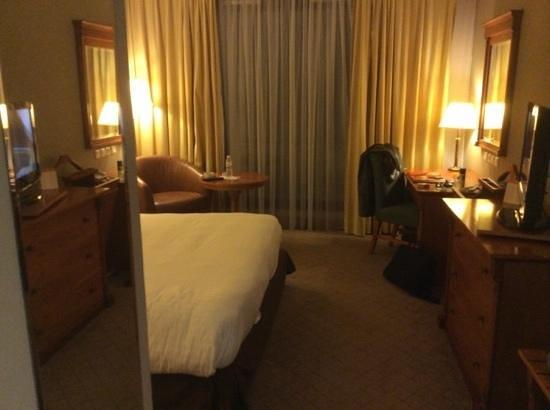 Hotel Les Berges Du Lac- Concorde: chambre