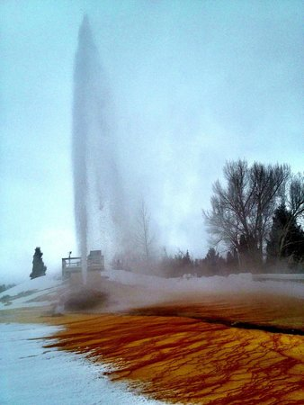 Soda Springs Geyser: This is how high it gets