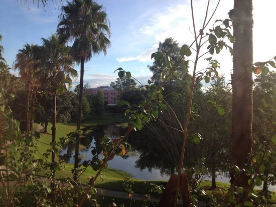 Quality Suites Lake Buena Vista: Vista do nosso quarto que ficava nos fundos