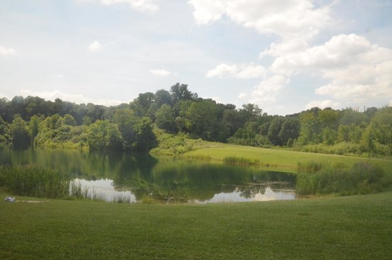 Cuyahoga Valley Scenic Railroad: View of Indigo Lake