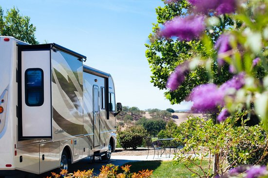 Wine Country RV Resort : Large Sites