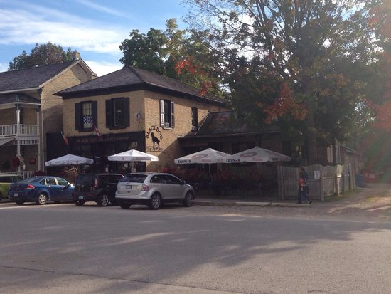 The Black Dog Bistro: Great patio, great atmosphere!