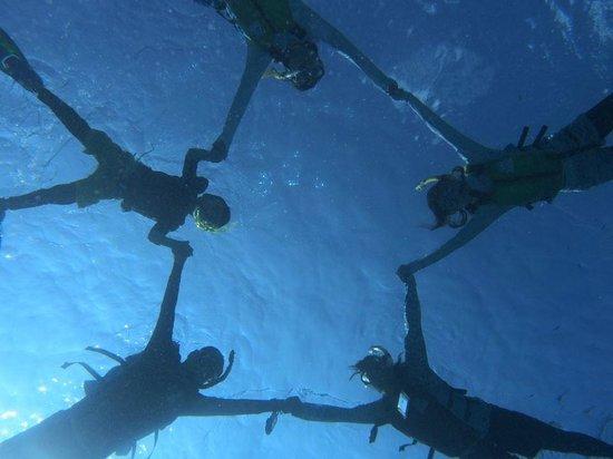 Sea Melt: ガイドさんの写真がうますぎる!