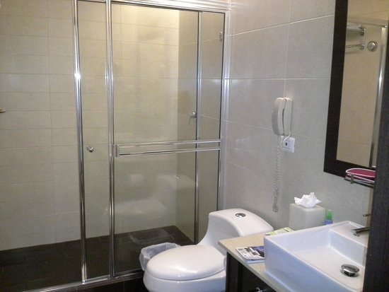 Tryp by Wyndham Panama Centro : Large bathroom....great shower!