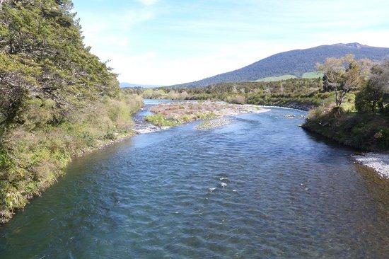 Tongariro River in Spring