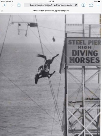 Egg Harbor City, NJ: The Diving Horse