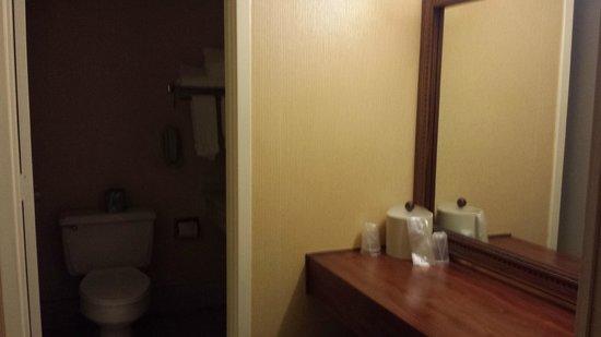 The Hotel Fresno: Bathroom