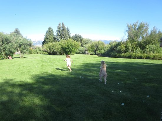 El Western Cabins & Lodges : Meadow