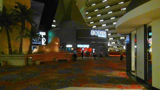 Bodies The Exhibition: Bodies...Luxor