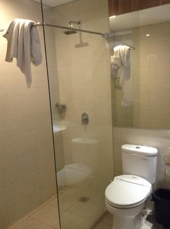 Vio Hotel Pasteur: Bathroom (after showering)