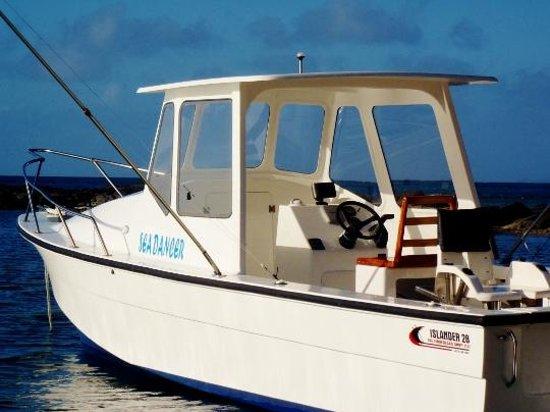 Makaira Resort : Sea Dancer