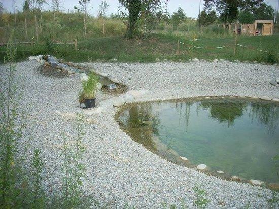 Laghetto della casa del fiume foto di la casa del fiume cuneo tripadvisor - Cose di casa mondovi ...