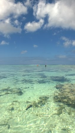 Palm Grove: Beautiful lagoon, you can snorkel or just walk in the water and watch the fish up close