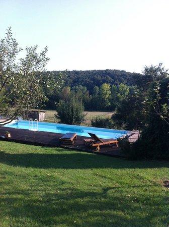 Agriturismo Centro Ippico della Berardenga: The pool