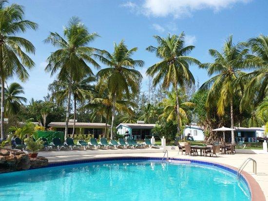 All Seasons Resort Europa: Giardino tropicale e piscina