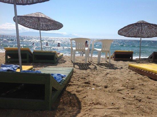 Grand Efe Hotel: Пляж справа. Всегда свободные лежаки у моря