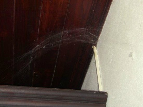 Vangsavath Hotel : Cobweb occupying our room during our stay.  Many were under our bed.