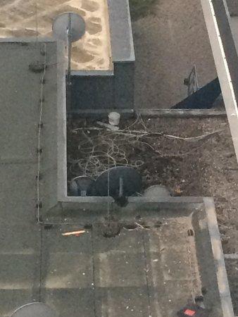Leonardo Hotel Hannover: Ausblick aus dem Fenster