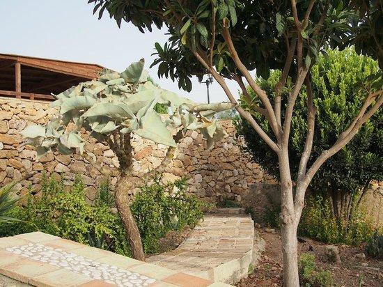 Al Palmento Cruillas: giardino