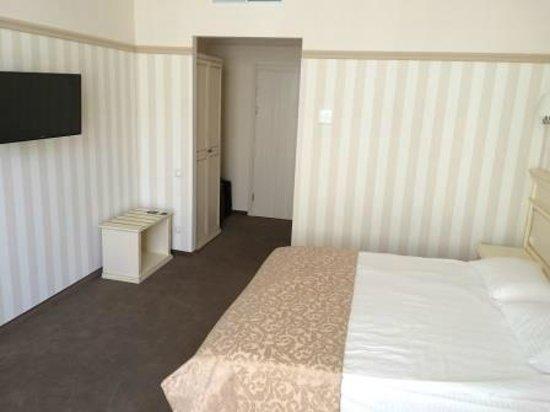 Premier Geneva Hotel: Geneva City Standard Double Room