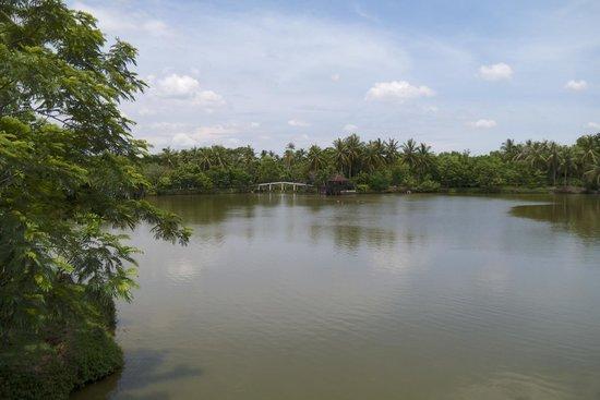 Bang Krachao: petit lac