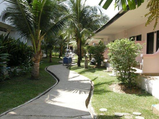 The Natural Resort: Кривая дорожка к бунгало