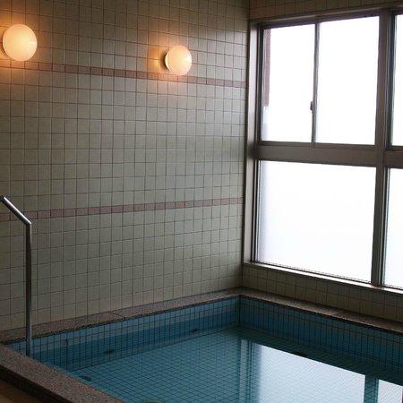 Tourist Inn Kochi: 9F男性浴場 内風呂