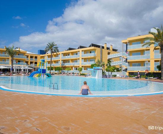 Terralta apartamentos turisticos benidorm spanje foto for Pool en keeshonden show