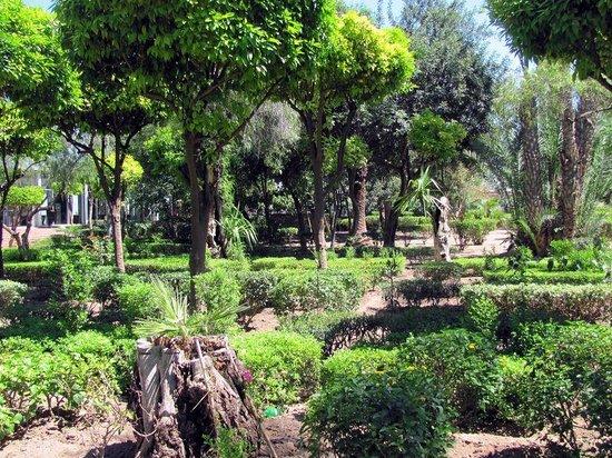 Cyber Parc Arsat Moulay Abdeslam : Die ganze Bandbreite der in Marokko möglichen Pflanzen