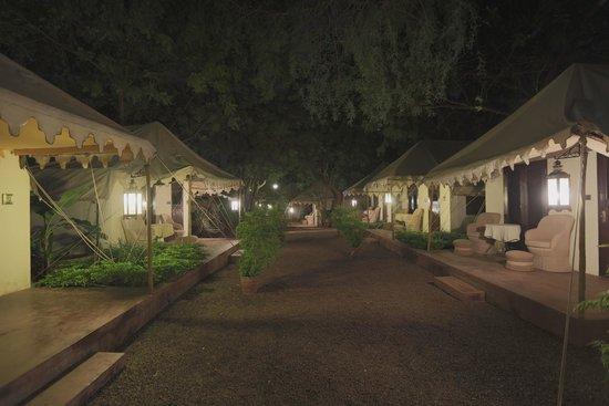Ajit Bhawan Luxury tent & Luxury tent - Picture of Ajit Bhawan Jodhpur - TripAdvisor