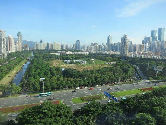 Grand Skylight Garden Hotel: View