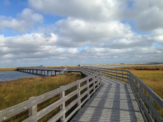 Kouchibouguac National Park : Kelly's Beach Boardwalk