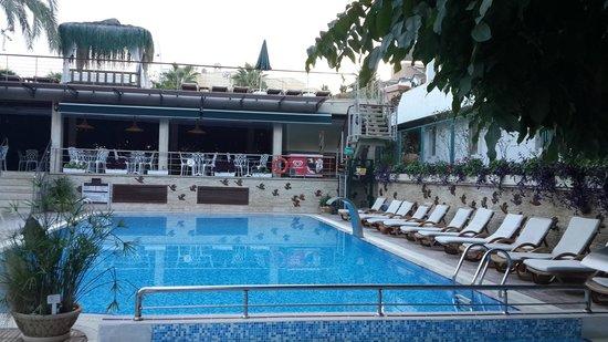 Ambassador Plaza Hotel : у бассейна вид на бар