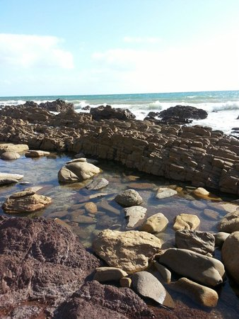 Marion Coastal Walking Trail: Rocky pools at the bottom of the stairs