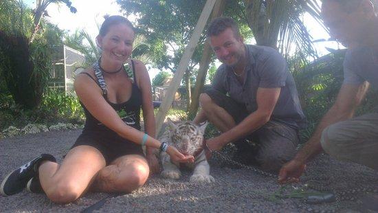 Zoological Wildlife Foundation: 15 minutes tiger cub encounter