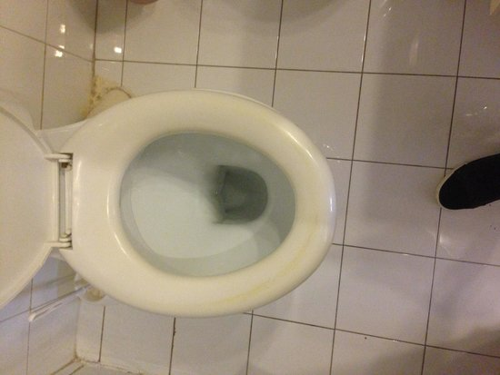 Windsor Hotel: Stained toilet seat