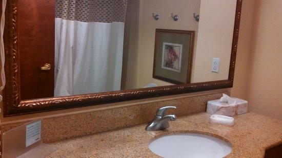 Hampton Inn & Suites Williamsburg Historic District: full vanity in bathroom