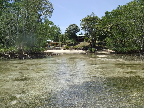 Bunaken SeaGarden Resort : Seagraden from Beach