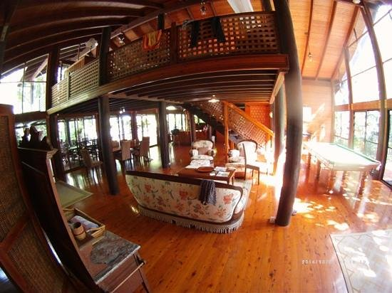 Wait a While in the Daintree: Downstairs with afternoon sun