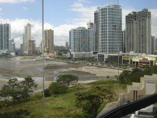 Plaza Paitilla Inn: Vista desde la habitaciòn