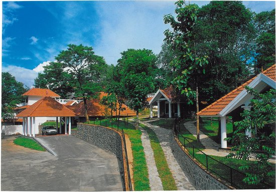 Hotel Treetop Updated 2018 Prices Reviews Thekkady Kerala Tripadvisor
