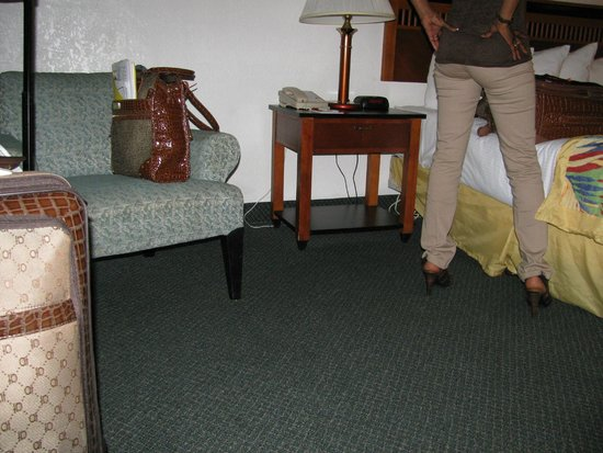 Ramada Fort Lauderdale Airport/Cruise Port: Typical motel room