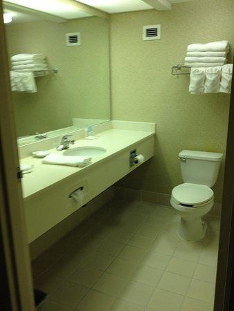 Hampton Inn Adel: standard bathroom