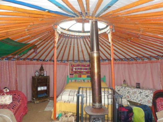 Blackdown Yurts - Yurt Holidays in Devon: from the doorway